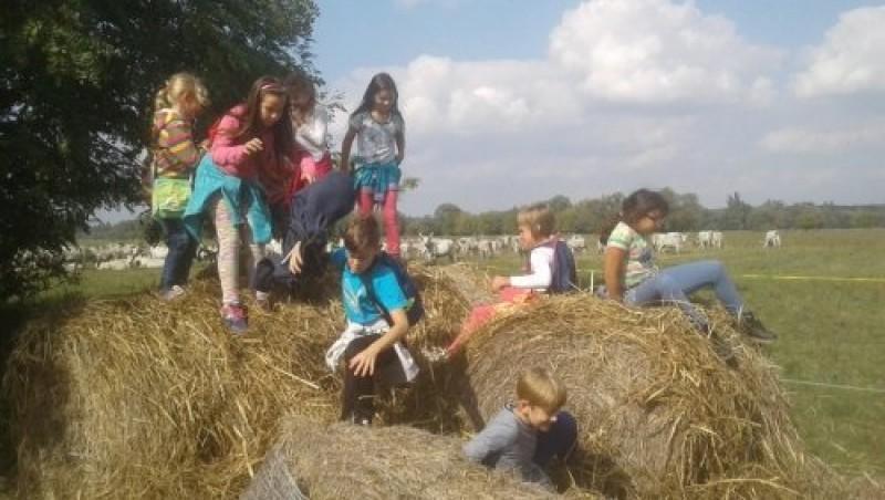 A Fehér-tóhoz túráztak a győrsövényházi iskolások