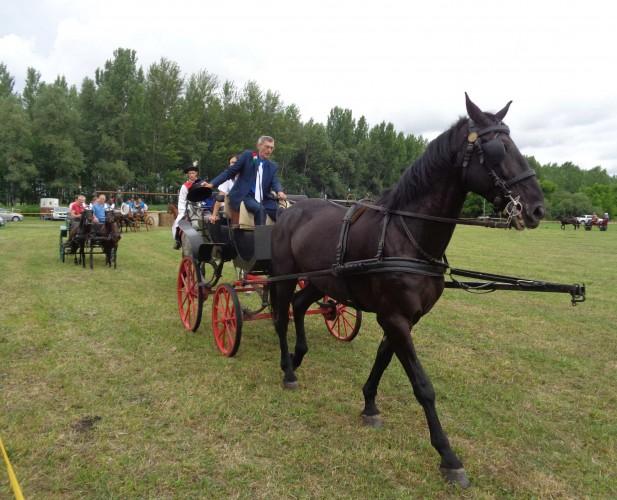 Jó hangulat a tizenegyedik lovastalálkozón