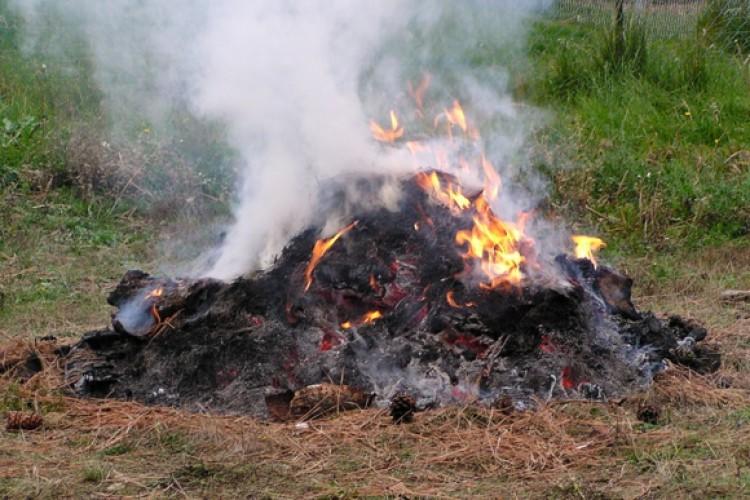 Kerti égetés – Győrsövényház a pozitív példák között