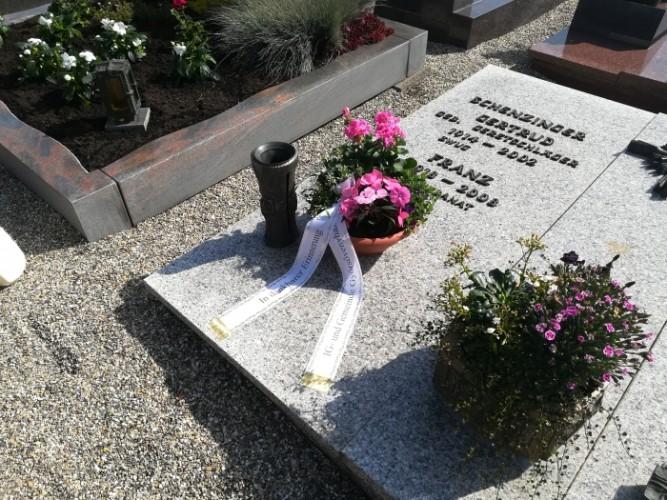 Győrsövényházi virág a Schenzinger család sírján